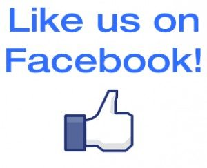Like us on Facebook to keep up to date with Ice Twister!